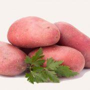bildstar aardappel